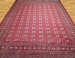 BOKHARA 2 PLY  Carpet